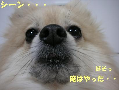 c0179136_2142636.jpg