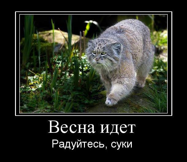 c0072801_22524890.jpg