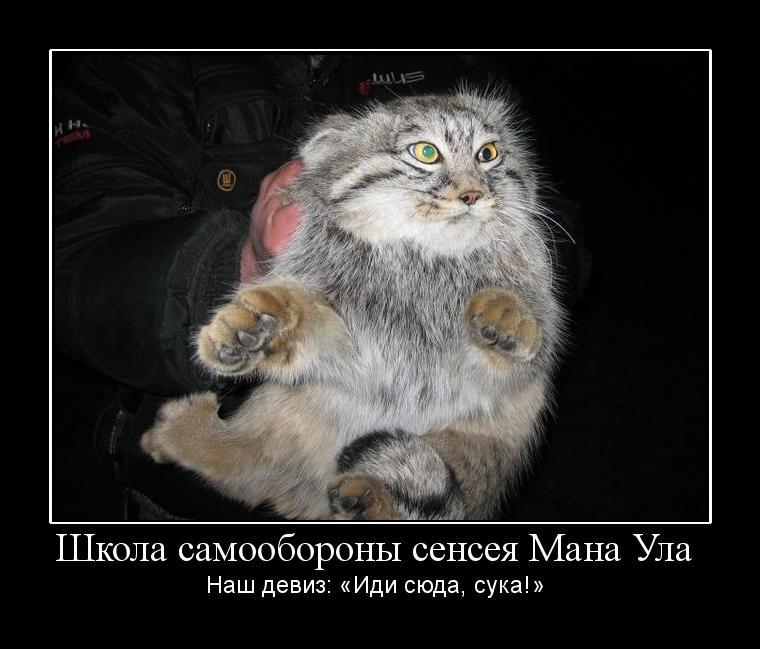 c0072801_22532291.jpg