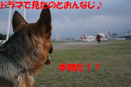 c0192541_15495716.jpg