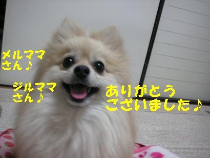 c0179136_22242254.jpg