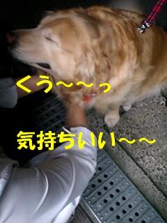 c0196992_9584680.jpg