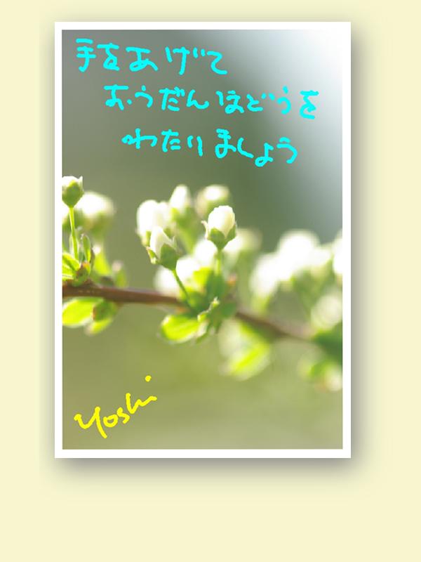 e0146738_17513926.jpg