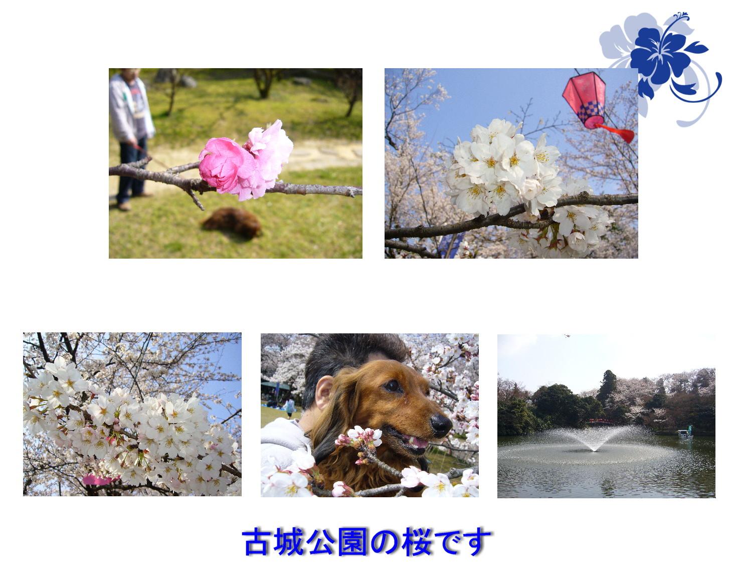 c0135361_2141093.jpg