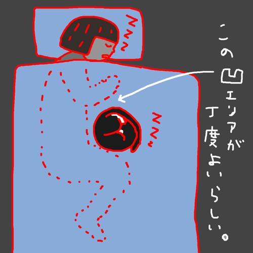 c0138553_1346157.jpg