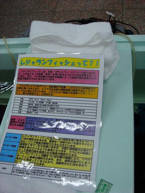 a0046339_20121533.jpg