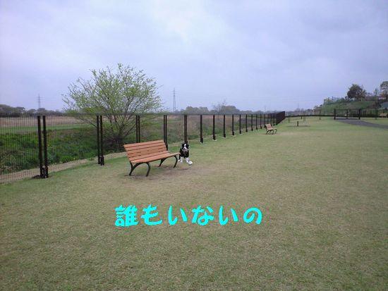 a0100564_1954338.jpg