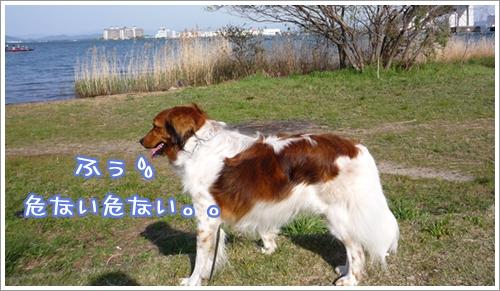 c0174773_14344352.jpg