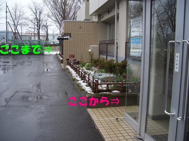 c0179048_10211749.jpg