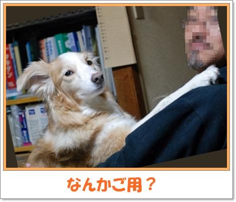 c0116921_051571.jpg