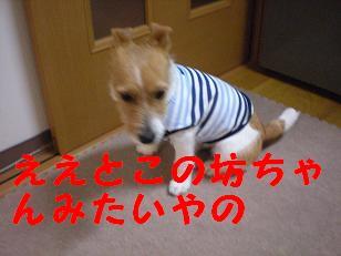 c0188294_20533168.jpg