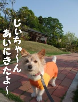 c0193061_2211353.jpg