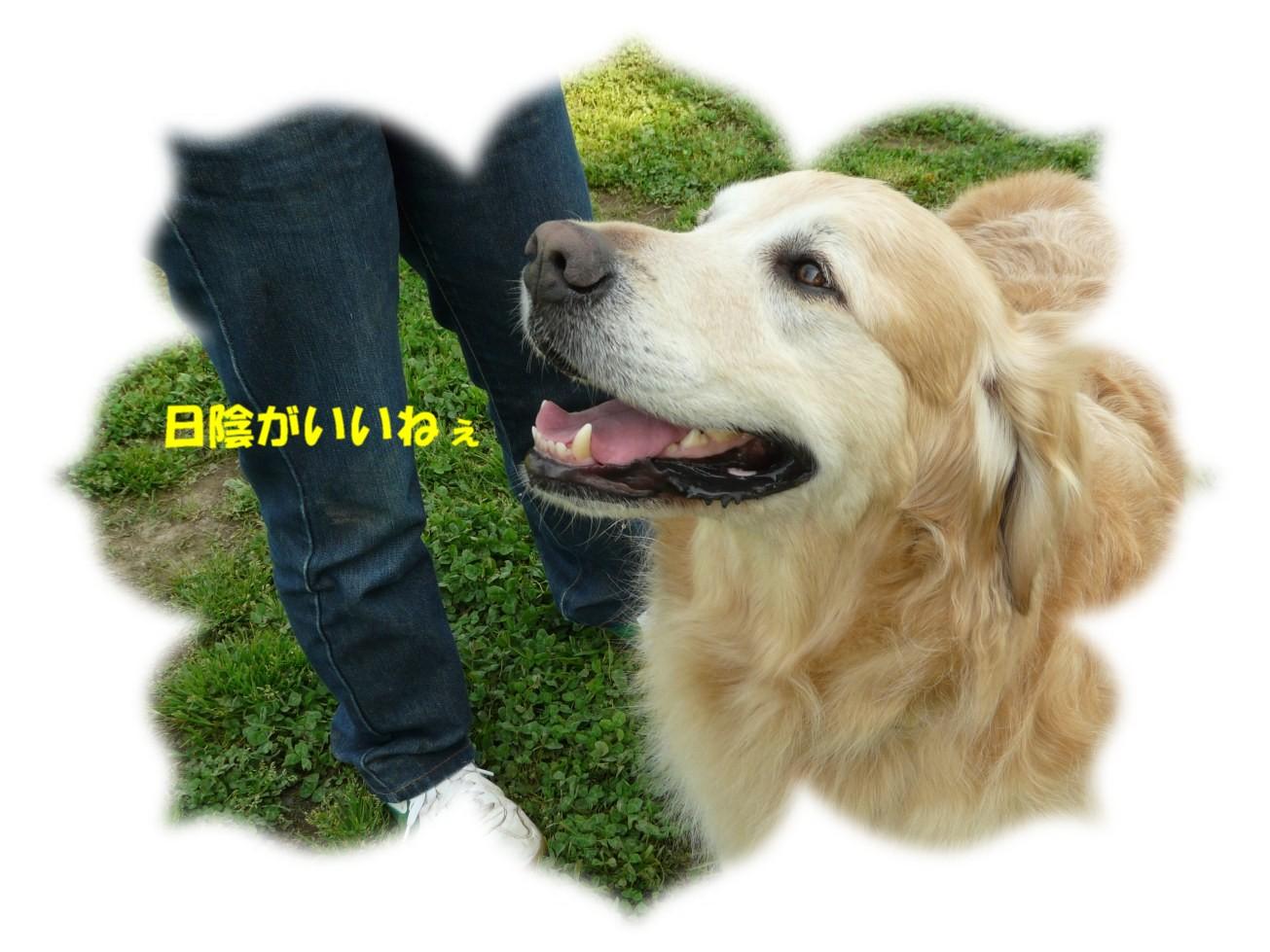 c0199365_22365946.jpg