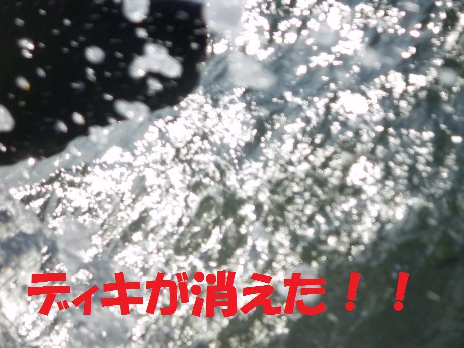 a0104464_12455552.jpg