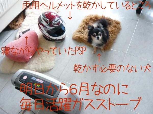 c0116550_0361719.jpg