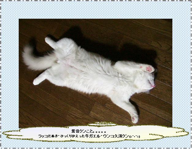a0121823_12505732.jpg