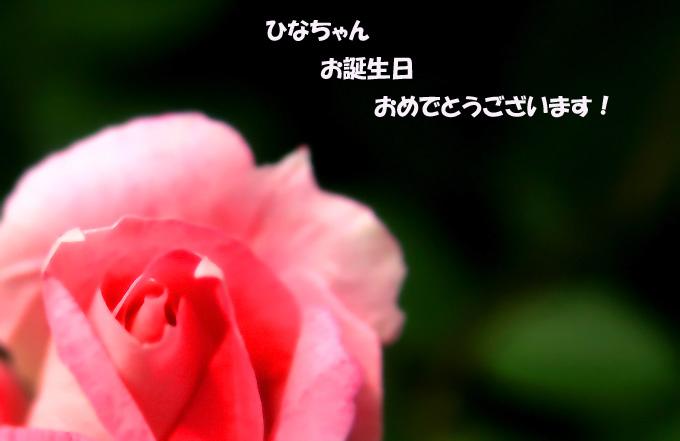 c0116787_15573545.jpg