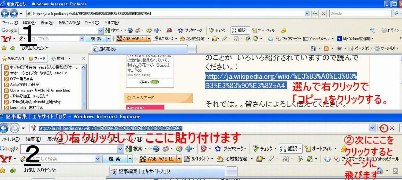 c0129682_1819186.jpg