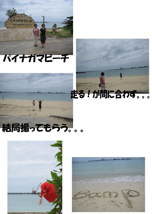 a0071756_1473197.jpg
