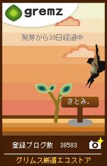 e0061461_031485.jpg
