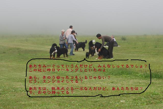 c0128344_249472.jpg