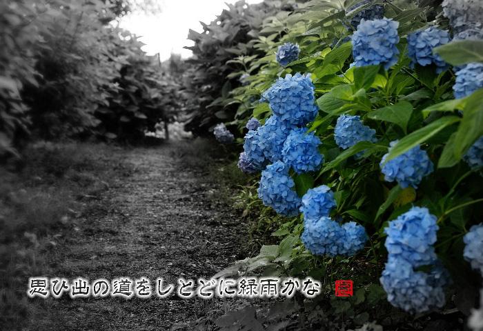 c0186592_2035087.jpg