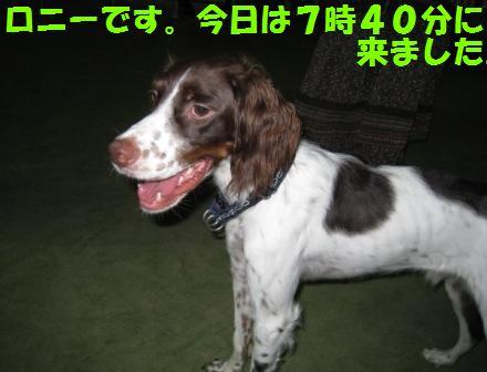 c0171368_2245413.jpg