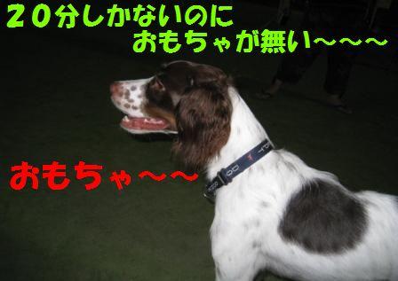c0171368_22464225.jpg