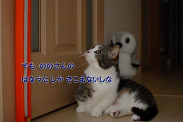 c0188875_9515897.jpg