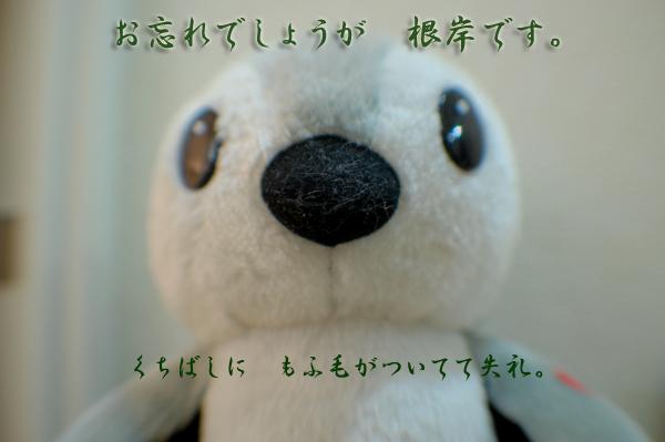 c0188875_9534416.jpg
