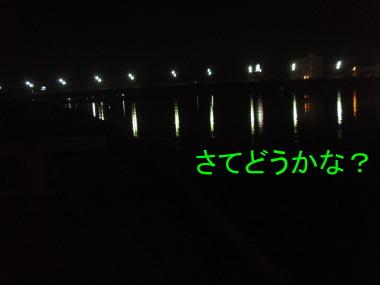 a0116261_36218.jpg