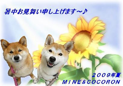 a0053987_2364737.jpg