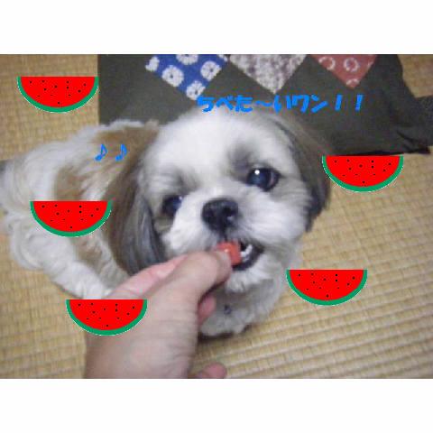 c0163878_15353588.jpg