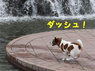 e0121589_18591570.jpg