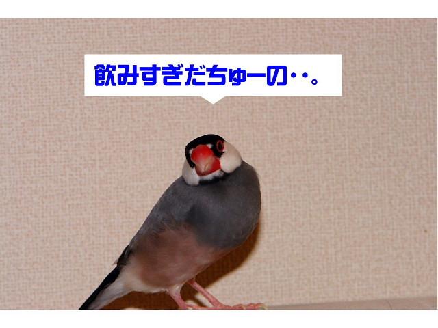 a0019545_18281897.jpg