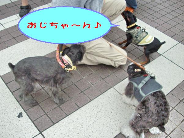 c0138198_15431281.jpg