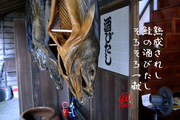 a0083760_227211.jpg