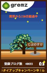 c0111410_3565130.jpg