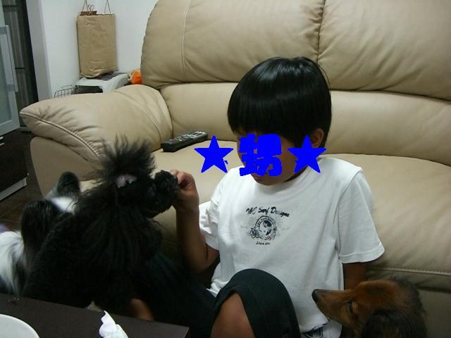 a0119591_001616.jpg