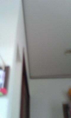 a0130584_1625379.jpg