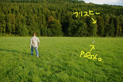 c0198524_22314.jpg