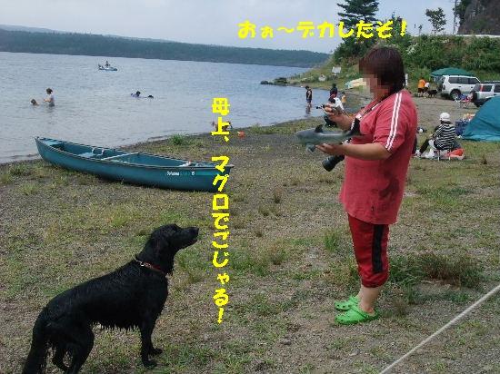 c0050220_14382.jpg