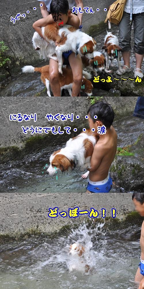 c0075585_7332197.jpg