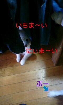 e0121589_14322758.jpg
