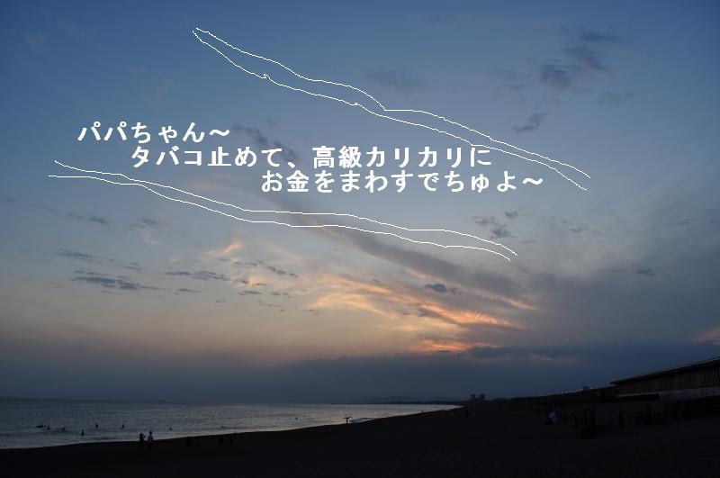 e0171996_1610373.jpg