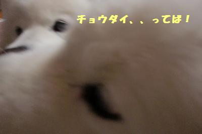 e0196135_19495210.jpg