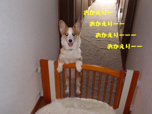 a0132275_1251794.jpg