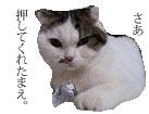 c0201577_924410.jpg