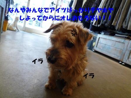 c0196992_1046175.jpg
