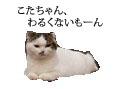 c0201577_8282100.jpg